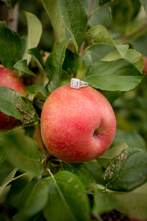 engagement ring on top on an apple