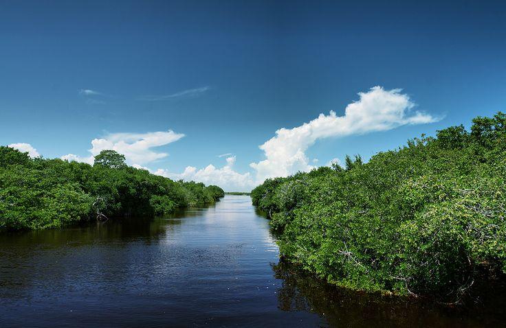Rio Lagartos Yucatan Mexico - Special Biosphere Reserve.