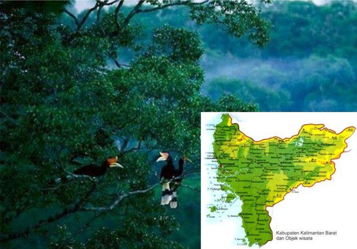 Wisata alam kalbar merupakan Provinsi dengan wilayah yang mempunyai berbagai macam keindahan alam yang bisa di nikmati sebagai destinasi wisata yang menarik