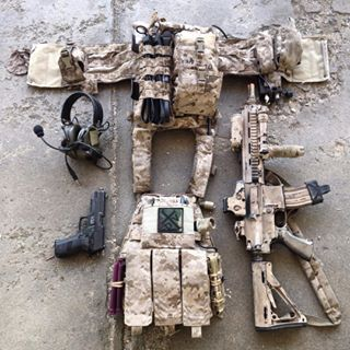 custom plate carrier - Google Search