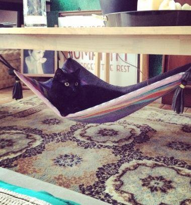 DIY magic carpet cat hammock from a towel // Asztal alá rögzíthető varázsszőnyeg macskaágy házilag // Mindy - craft tutorial collection