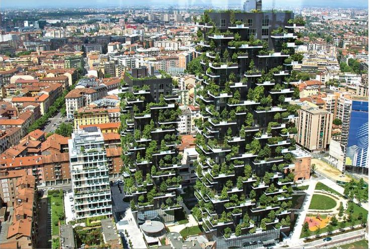 See Here World's Vertical Forest For the First Time in Milan  #health #living #milan #forest #vertical #amazing