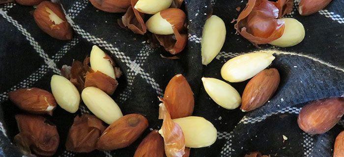 How to amandelen ontvellen | Bakkenderwijs #bakken #homemade #howto #amandelen #amandelenontvellen