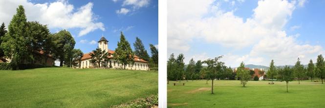 Okayama|岡山(おかやま)|岡山農業公園 ドイツの森|芝生| 【写真左】 入場ゲートから街エリアへ向かう途中の芝生スペースです。  【写真右】 寝転がったり走り回ったり遊んだりできる芝生広場です。  *園内ではドックラン以外はワンちゃんは必ずリードを固定してください。