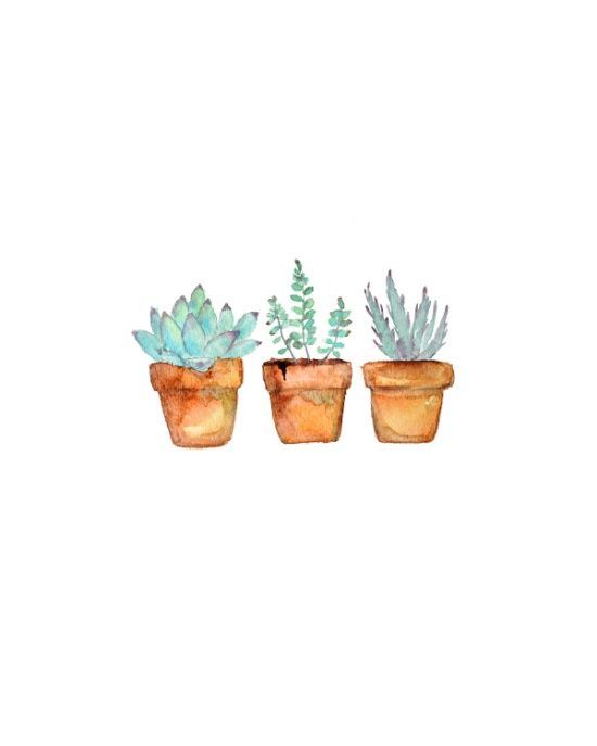 watercolor succulent Art Print