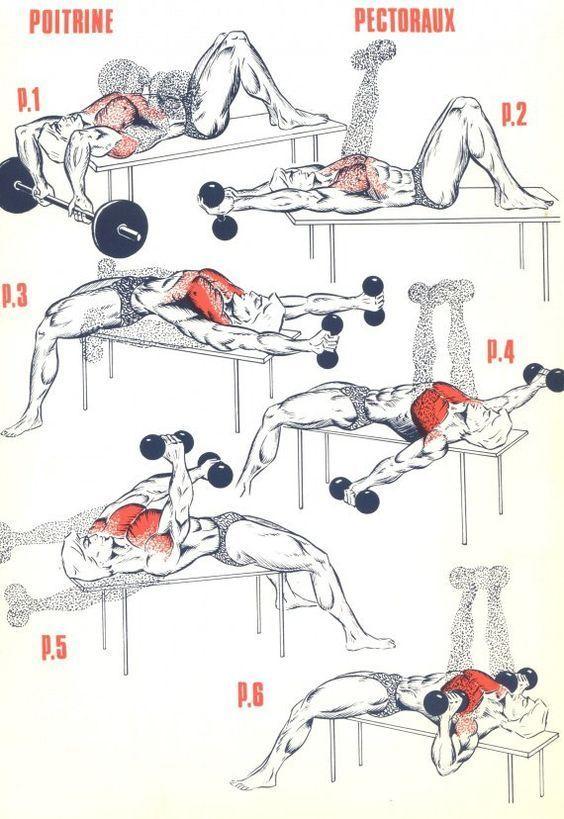 Upper body weight loss tips
