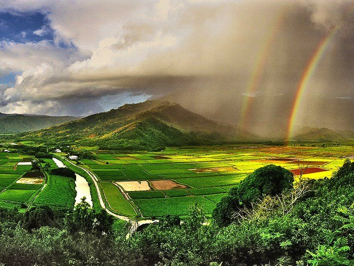 Oahu, Hawaii. Dude, it's beautiful. If you DON'T wanna go, I don't wanna know about it.