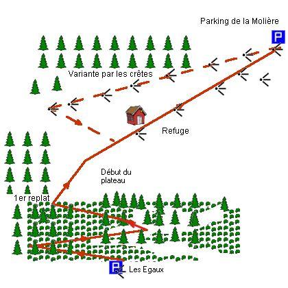 Le chemin en très bon état monte jusqu'à un premier replat (environ 1,5 km) puis après une montée raide et courte on atteint le vaste plateau de la Molière…