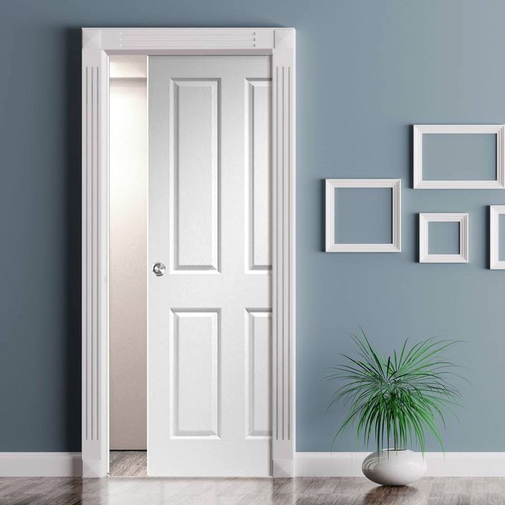17 Best Images About Single Panelled Pocket Doors On