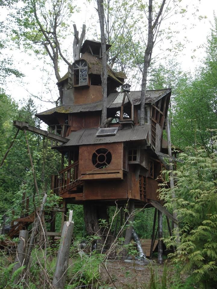 217 Best Tree Houses Secret Rooms Awesome Stuff Images On