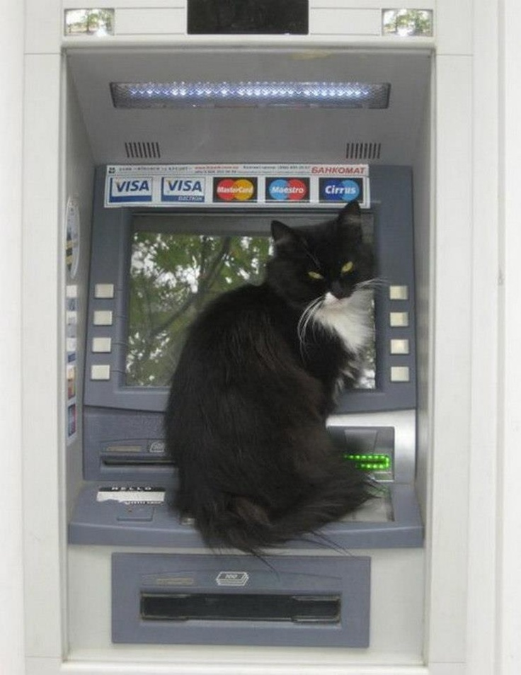 how do i get an atm machine in my business