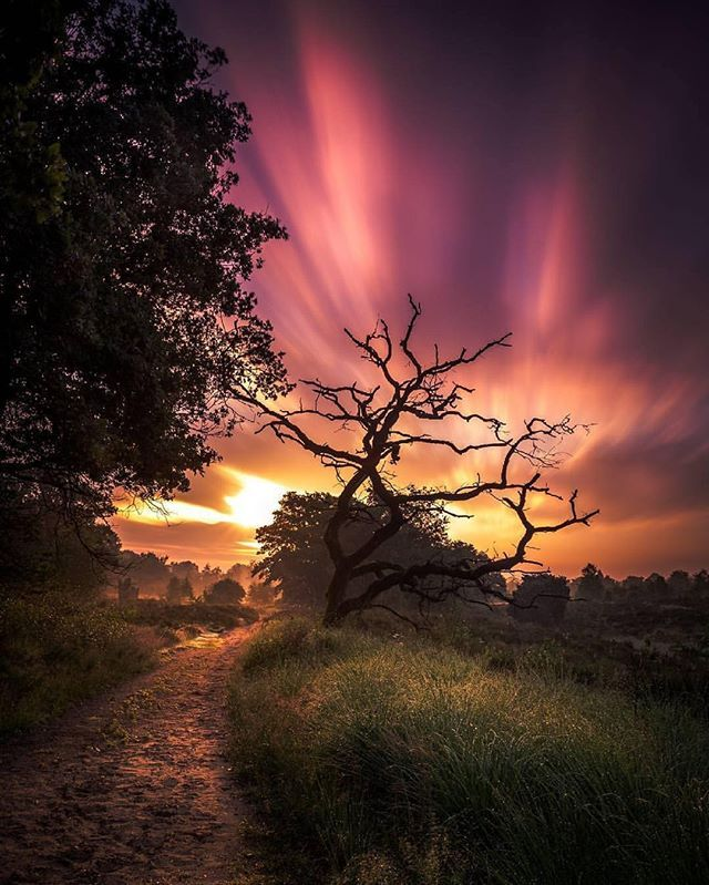 Best Long Exposure Photography Images On Pinterest Exposure - Long exposure photographs capture entire day sunrise sunset