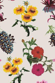 botânica - farmrio