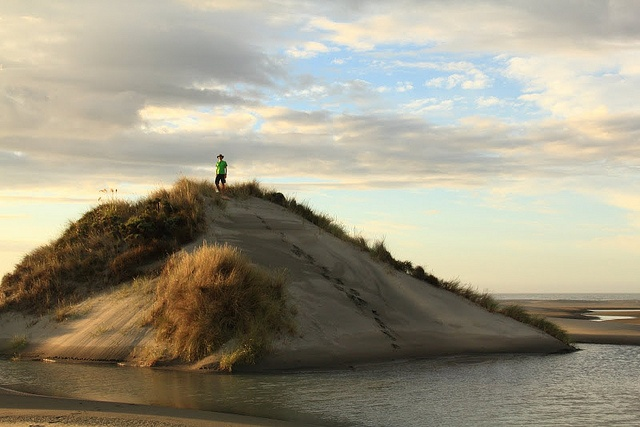 King of the hill at Farewell Spit in New Zealand. Photo courtesy of Dr. Benjamin Ross.