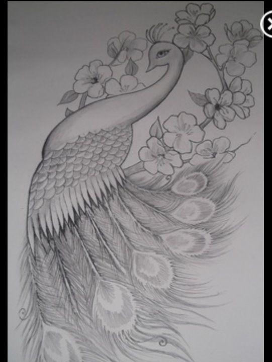 Peacock cute rib tattoo