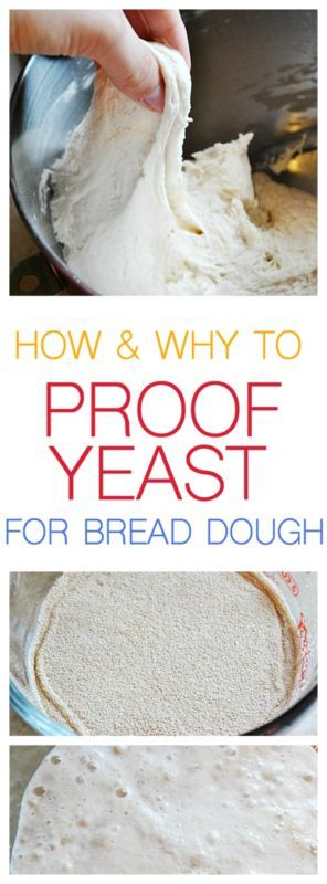 How and why you should be proofing your yeast for bread dough!