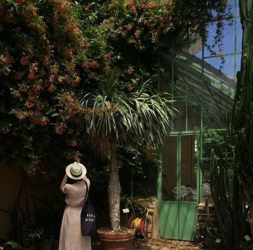 AESME Flowers & Fine Art   Rome Botanic Gardens
