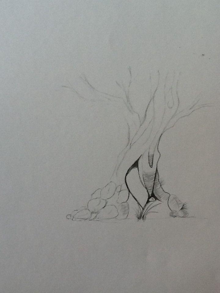 Træ Tegning 1