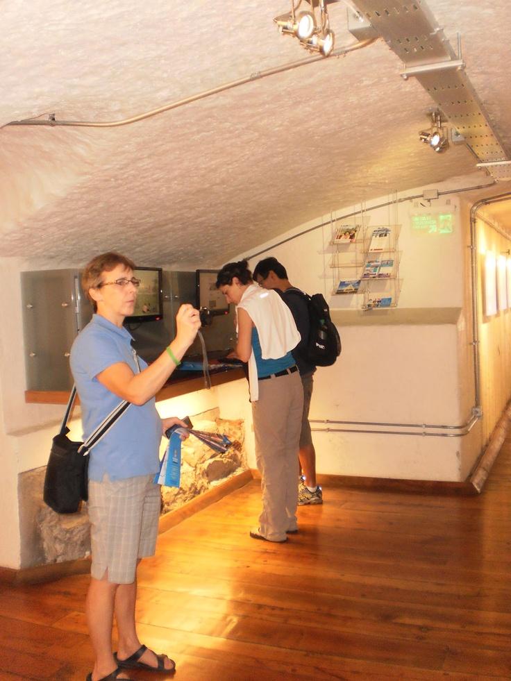 Turistas Visitando la Oficina