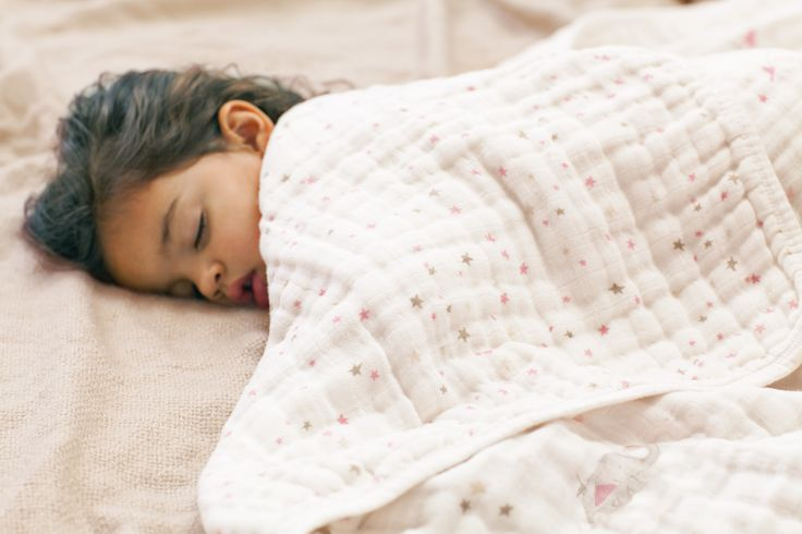Aden and Anais Security Dream Blankets