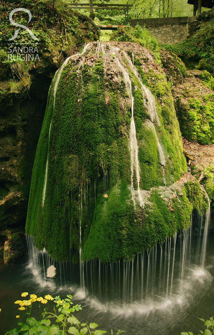 The Bigar Cascade Falls in Carass Severin, Romania at the 45th parallel (45° 0′ 15.28″ N 21° 57′ 36.41″ E). The dramatic moss-covered falls are situated in the forests of the Anina Mountains and is formed by an underground water spring that spills into the Minis River.