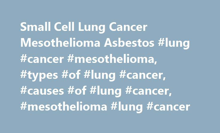 Small Cell Lung Cancer Mesothelioma Asbestos #lung #cancer #mesothelioma, #types #of #lung #cancer, #causes #of #lung #cancer, #mesothelioma #lung #cancer http://charlotte.remmont.com/small-cell-lung-cancer-mesothelioma-asbestos-lung-cancer-mesothelioma-types-of-lung-cancer-causes-of-lung-cancer-mesothelioma-lung-cancer/  # Lung Cancer Asbestos can be a contributing factor in the development of lung cancer or even the primary cause in unusual cases. But ninety percent of all lung cancer…