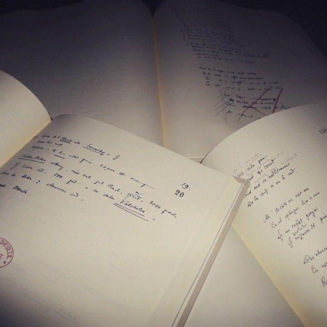 Incepand cu 2006 Academia Romana a inceput sa publice Manuscrisele lui Mihai Eminescu in editii de colectie tiparite pe hartie speciala. Le gasiti aici: http://goo.gl/pWprMZ