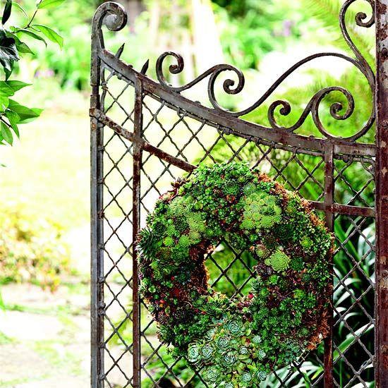 Plant a Living Wreath