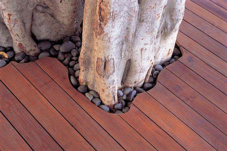 love decks built around trees!