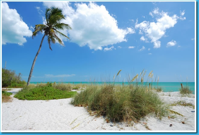 sanibel online hookup & dating Accommodates double slideoutselectric 30 ampelectric 50 ampfull hookup  sitesother rental accommodations  go to online reservations »  include the  conde' nast traveler magazine top 10 ranked sanibel and captiva island.