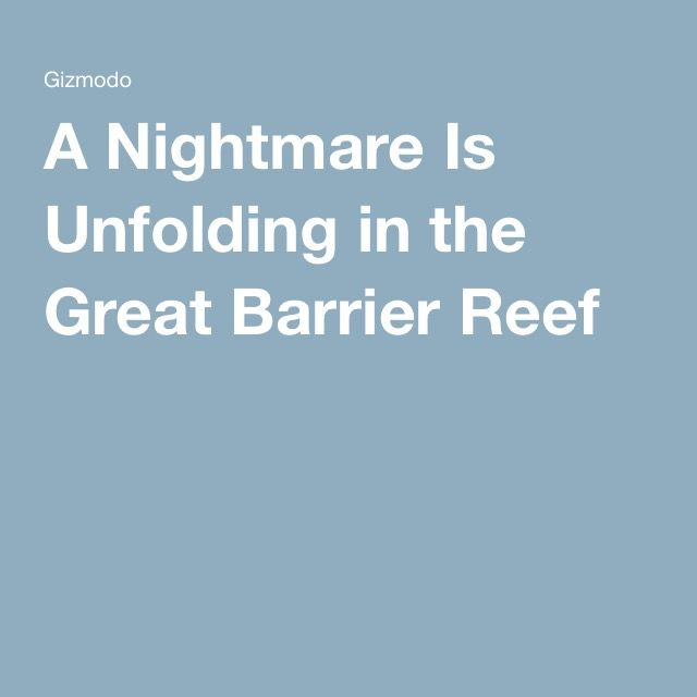 A Nightmare Is Unfolding in the Great Barrier Reef