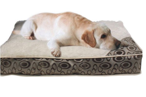 Phoenix Dog Bed - Medium