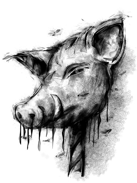 Image result for lord of the flies pig head