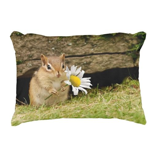 Adorable Baby Chipmunk with Daisy Accent Pillow