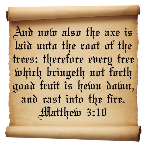 Bible Quotes About St John The Baptist: 159 Best Images About MATTHEW On Pinterest