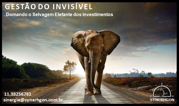 #synerhs SYNapse! Gestão do Invisível em... Capital #imobilizado: domando o selvagem #elefante dos investimentos #gestão #equilíbrio #fluidez #lucratividade #rentabilidade #consultoria #capacitação #supervisão http://eepurl.com/bDs3r1