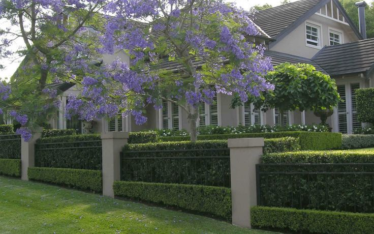 Formal Front Garden Ideas Australia perfect formal front garden ideas australia path straight with design