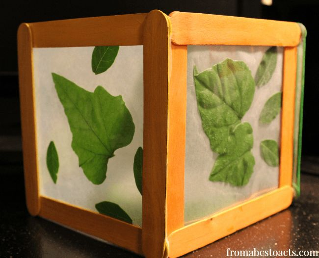 Wax Paper Nature Night Light - Think Outside the Toy Box