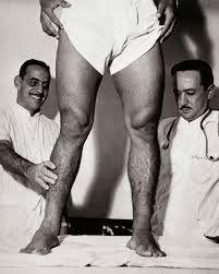 Garrincha krzywe nogi #garrincha #brazil #pilkanozna #futbol #sport #sports #football #soccer