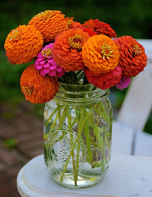 Zinnias in a mason jar = simple and perfect