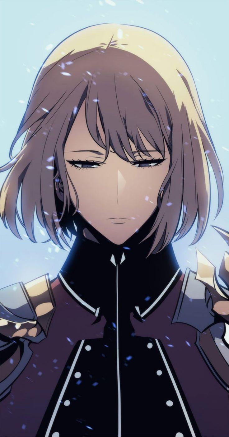 Pin by horacio luiz da silva on solo leveling anime