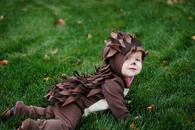 Baby (or kid) Halloween Costume - Hedgehog! Really simple - just felt triangles (and ears and light patch for the belly) sewn on a hooded brown baby outfit