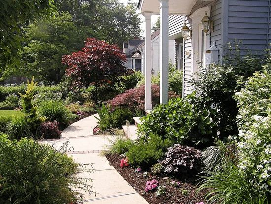 1275 front yard landscaping