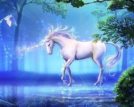 Blue Unicorn | Blue Unicorn or Purple Unicorn? - yorkshire_rose - Fanpop