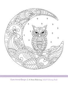 Another free adult coloring book page! Exotic Animal Designs is going to be release this week on Amazon and through www.bluestarcoloring.com. Simply, print, color, and relax! If you love this image, make sure to check back later this week for the full book release!