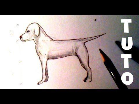 rsultat de recherche dimages pour dessin chien facile