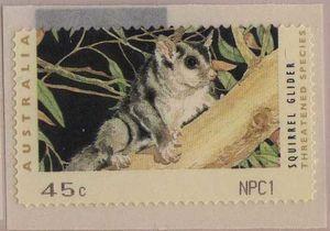 Counter Printed - Squirrel Glider