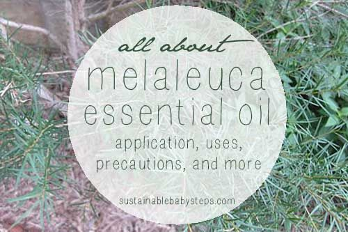 54+ Benefits and Uses for Melaleuca Essential Oil (from acne to warts), via SustainableBabySteps.com