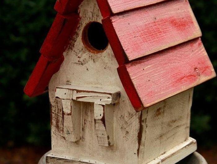 Les 25 meilleures id es de la cat gorie cabane oiseaux sur - Cabane oiseaux fabriquer ...