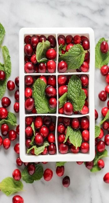 Cranberry Mint Ice Cubes - For all your holiday gatherings!